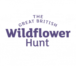 Great British Wildflower Hunt logo
