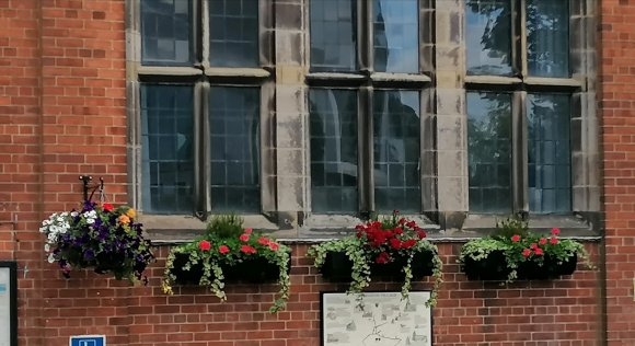 Village Hall window boxes and hanging basket, early summer